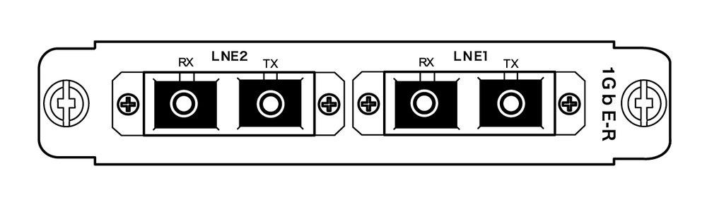 2GbE_line-card-optical_rear